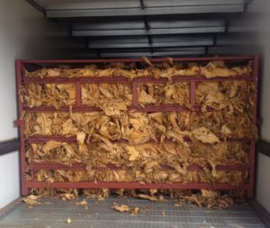 Cover photo for Tobacco Curing Management Before & After the Storm