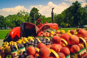 Cover photo for FSMA Produce Safety Training