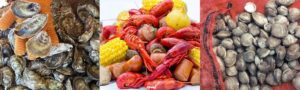 Cover photo for 2018 Cultured Seafood Festival, March 9 in New Bern