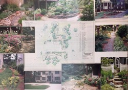 pictures of various plants and landscaping drawing of where to place them